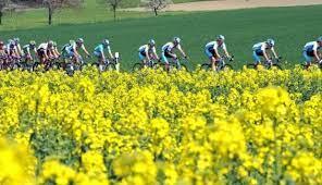 primavera ciclismo
